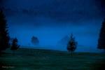 Cansiglio di notte