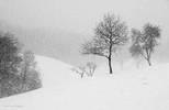 Montello sotto la neve