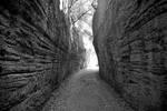 Strada Etruscha 2